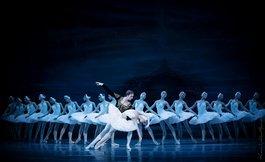 Гала-концерт артистів балету: українські зірки та запрошені гості