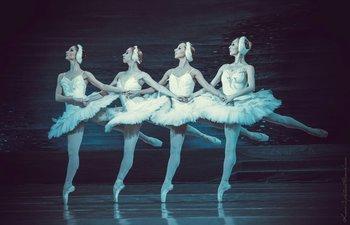 Танець маленьких лебедів. Фото О. Орлової.