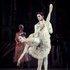 """У партії Клари в балеті П. Чайковського """"Лускунчик"""". Принц - О. Стоянов."""