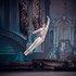 """У партії Принца Дезіре в балеті П. Чайковського """"Спляча красуня""""."""
